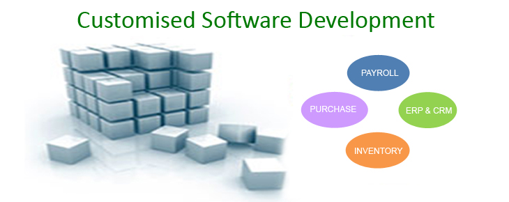 Customised Software Development Services